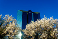 BB&T Financial Center in Winston-Salem