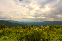 Blue Ridge Parkway in Summer