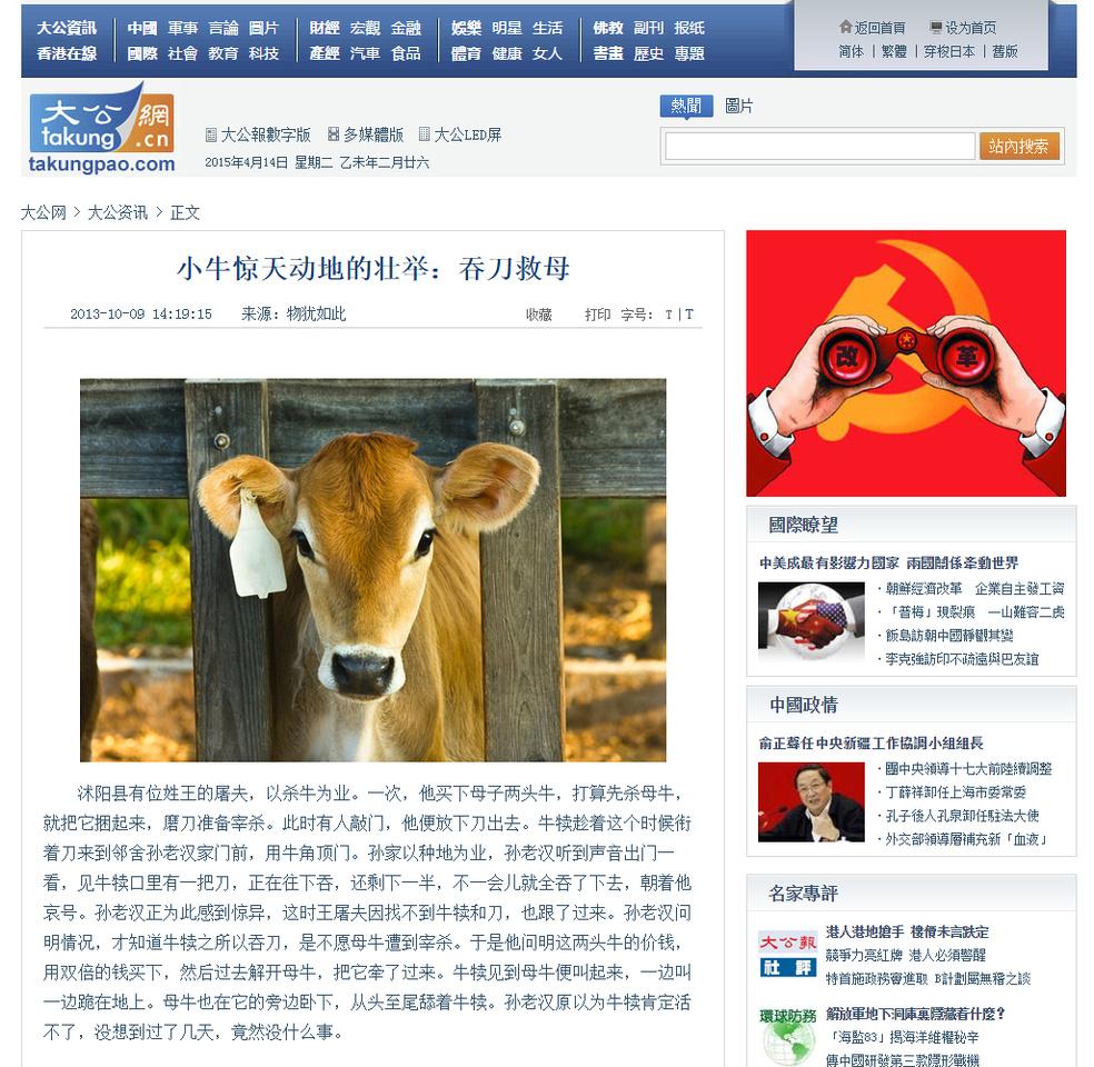 takungpao.com - Calf